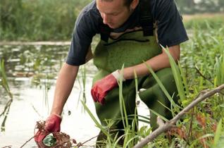 Acvacultura si Piscicultura